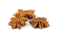 Star Anise. Stock Photos