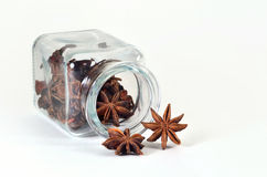 Star anise in spice jar. Star anise in a jar for spices on a white background Stock Images