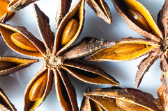 Star Anise spice seeds macro Royalty Free Stock Images