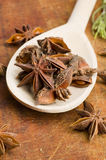 Star-anise spice in spoon Stock Photography