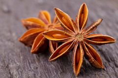 Star Anise spice Royalty Free Stock Photo