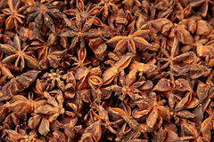 Star anise spices Royalty Free Stock Photography