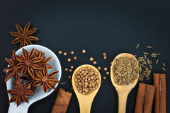 Star Anise and Spices coriander seeds, cumin seeds, cinnamon on black background Royalty Free Stock Image