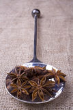 Star Anise on Spoon Royalty Free Stock Photo