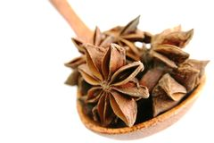 Star anise in a spoon Stock Photography