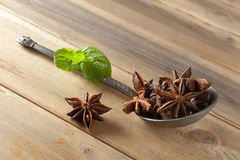 Star anise on a spoon Stock Image