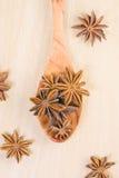 Star anise on the spoon Stock Photos