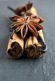 Star anise, vanilla and cinnamon sticks. Stock Photography