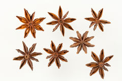 Star anise (white background) Stock Photo