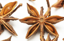 Star anise on white background Royalty Free Stock Photo