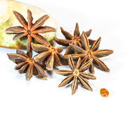 The star anise on white background. Royalty Free Stock Image