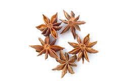 Star anise. On a white background, extreme closeup Royalty Free Stock Images