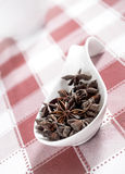 Star anise on white and red tablecloth. Selective focus Stock Images