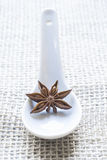 Star anise on a white spoon Royalty Free Stock Photos