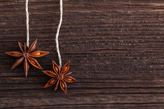 Star anise on wooden background Stock Image