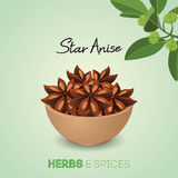 Star anise in wooden bowl Stock Photos