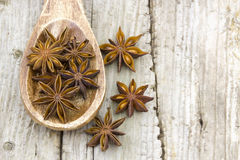 Star anise on wooden spoon Stock Image