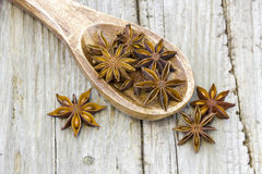 Star anise on wooden spoon Stock Photo