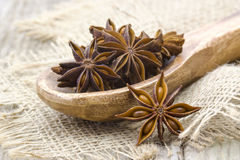 Star anise on wooden spoon. Close up stock photography