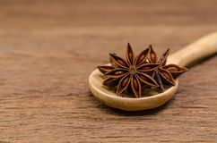 Star anise and cinnamon stick. Star anise in wooden spoon on wooden board background,Chinese star aniseed Royalty Free Stock Images