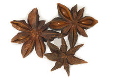 Star aniseed Stock Photography