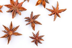 Star aniseed royalty free stock photo