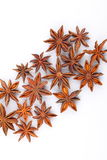 Star aniseed royalty free stock images