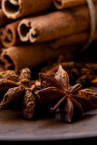 Star aniseed and cinnamon sticks Royalty Free Stock Image