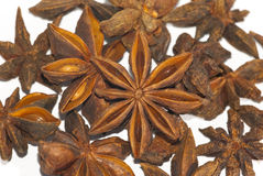 Star aniseeds Royalty Free Stock Photo