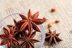 Star anises on a sackcloth. Dried star anises on a sackcloth Royalty Free Stock Photos