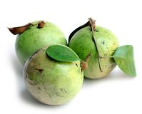 Star apple fruit Royalty Free Stock Images