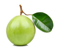 Star apple isolated on the white background Stock Image