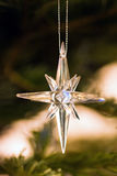 Star as decoration in christmastree Stock Photos