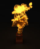 Star award in the fire. Golden star award in the fire Stock Images
