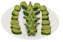 Star of cactus Stock Photos