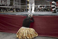 Star cholita female wrestler  knocked out of the ring Royalty Free Stock Images