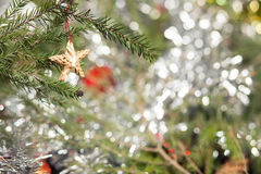 Star Christmas Tree Decoration. Wooden star decoration on a Christmas tree branch Royalty Free Stock Photography