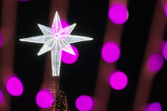 Star on Christmas tree and defocused of glitter or bokeh Royalty Free Stock Image