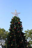 Star on the Christmas tree. Whith blue sky background Royalty Free Stock Image