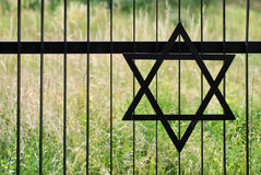 Star of david. And green grass Royalty Free Stock Images
