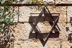 Star of David on the stone wall and plant Royalty Free Stock Photography