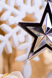 Star detail Royalty Free Stock Images