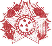 Star Emblem Badge Vector Design Clipart Royalty Free Stock Photos