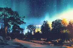 Star field above the trees in forest. Night scenery,illustration Royalty Free Stock Photos