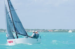 Star finishes 7th at Melges 20 World Championships Royalty Free Stock Images