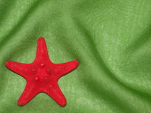 Star fish. Red star fish on the green fabric suitable as background Stock Images