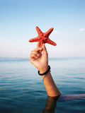 Star fish. Hand held starfish in front of a caribbean blue ocean Stock Photography