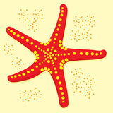 Star fish. A red star fish with sand surround it vector illustration