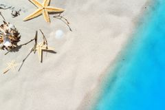 Star fish on beach Royalty Free Stock Photography