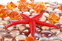 Star fish on the gems Stock Photo